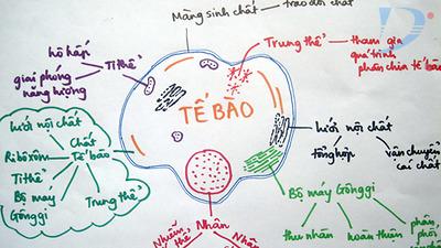 Làm thế nào để học tốt bộ môn sinh học?