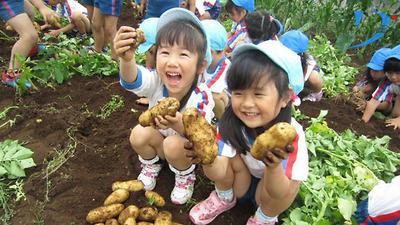 Phương pháp giáo dục mầm non tại Nhật Bản (phần 1)